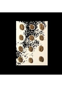 Congo / Kokondo Kivu green coffee, 500g