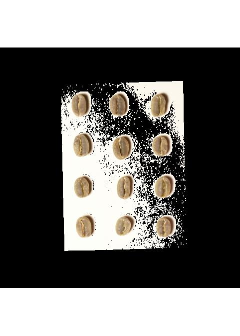 Ethiopia / Chelelektu Sidamo green coffee, 500g